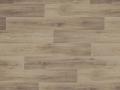 Lime Oak 669M PSH
